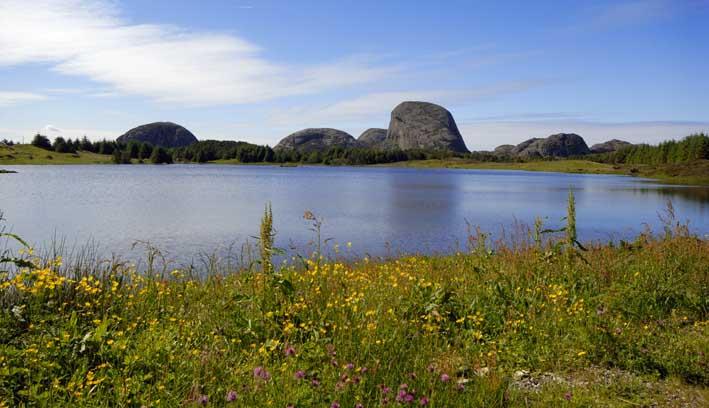 uformell rcea sogn og fjordane